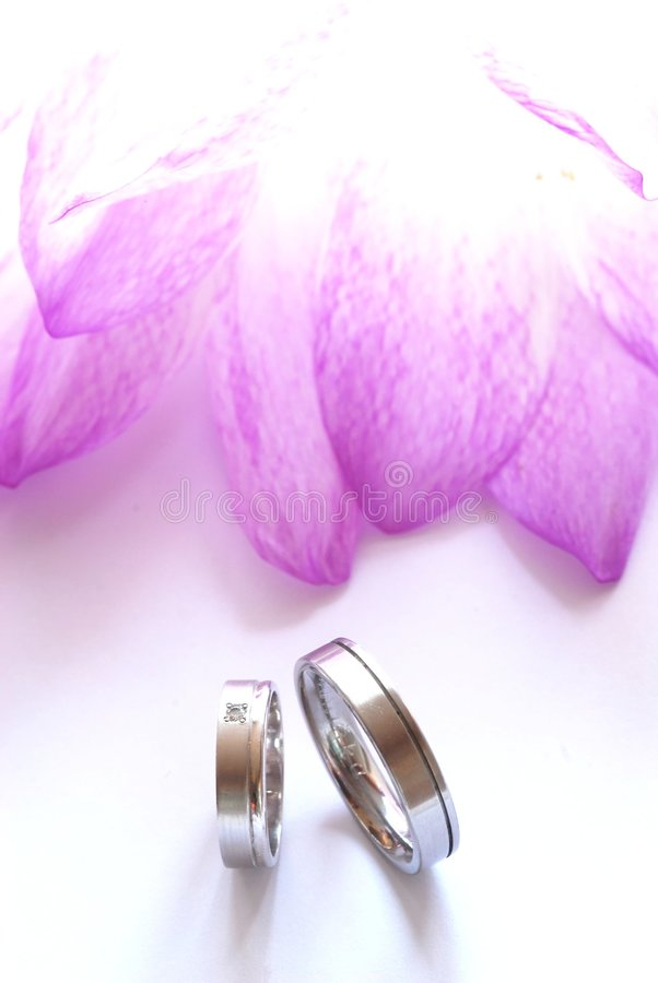 Wedding still-life royalty free stock image