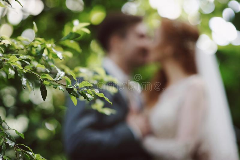 Wedding style abstract blurred background bride and groom kissing in park royalty free stock photo