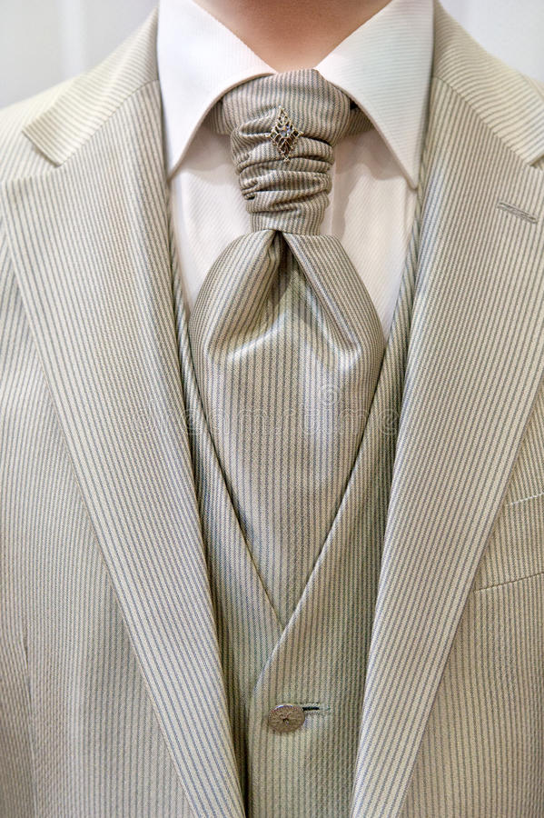 Free Wedding Suit Royalty Free Stock Images - 18167709