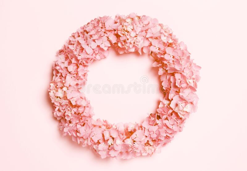 Wedding, summer pastel background. The frame is round with white flowers on a coral, pink background royalty free stock images