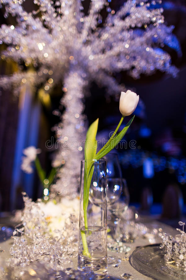 Wedding table. Set for dining,wedding party,a tulip in glass royalty free stock images