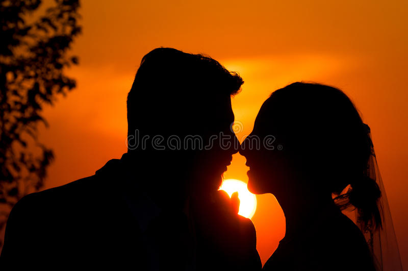 Download Wedding theme stock photo. Image of adult, female, autumn - 26621984