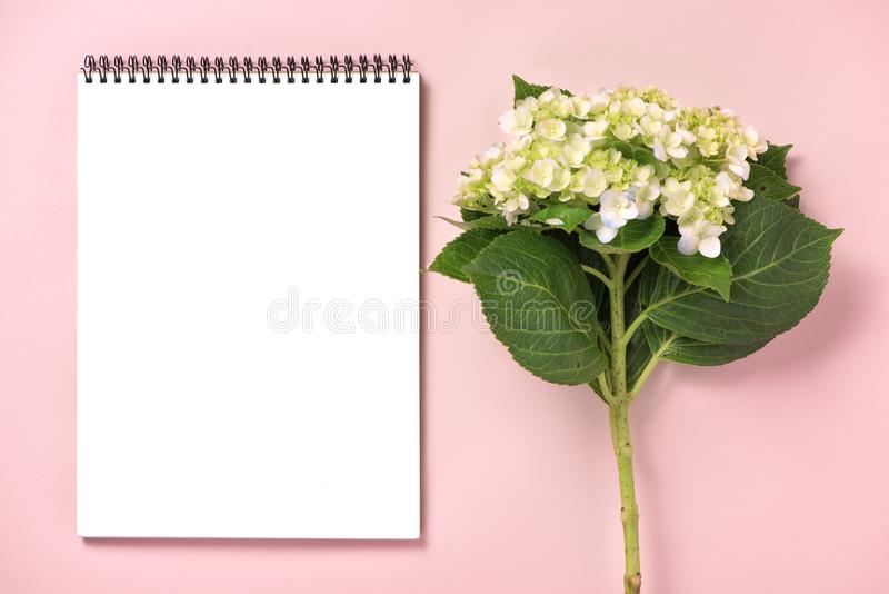Wedding to do list with flowers. Mockup planner flat lay. stock photo