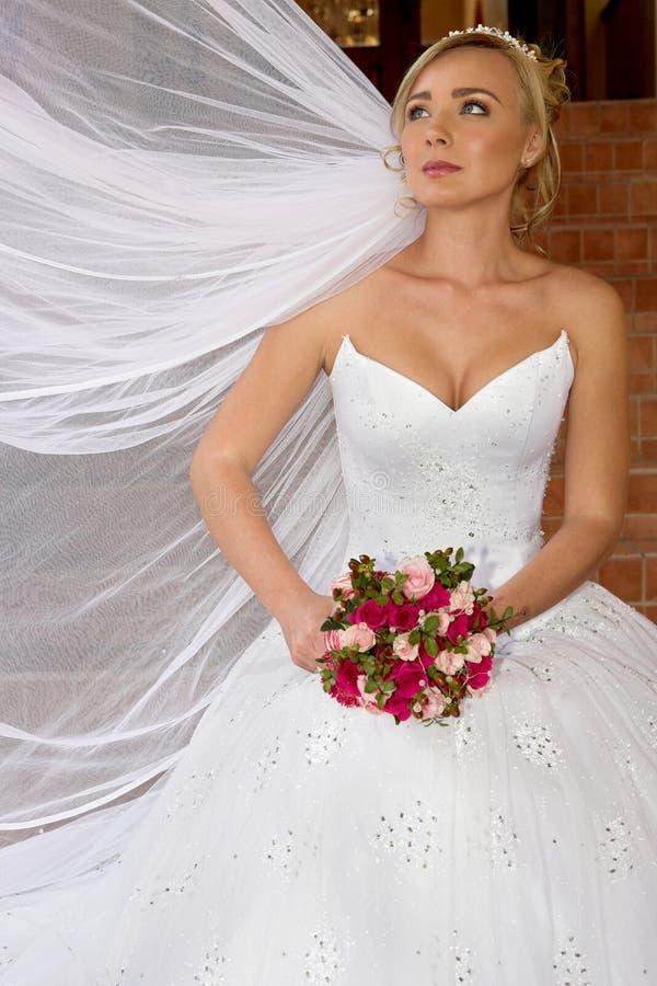 Wedding Veil stock photography