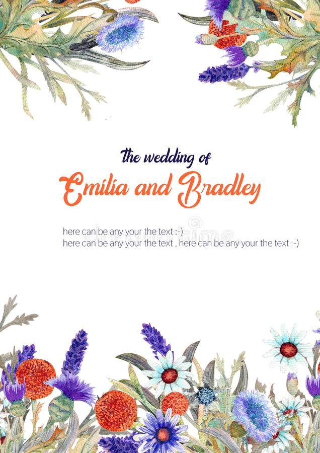 Wedding vertical frame of wild flowers. Watercolor. Flower arrangement. Greeting card template design. Invitation royalty free illustration
