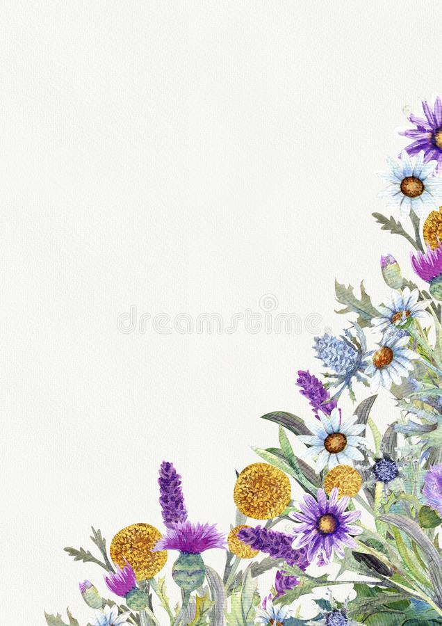 Wedding vertical frame of wild flowers. Watercolor. Flower arrangement. Greeting card template design. Invitation royalty free stock image