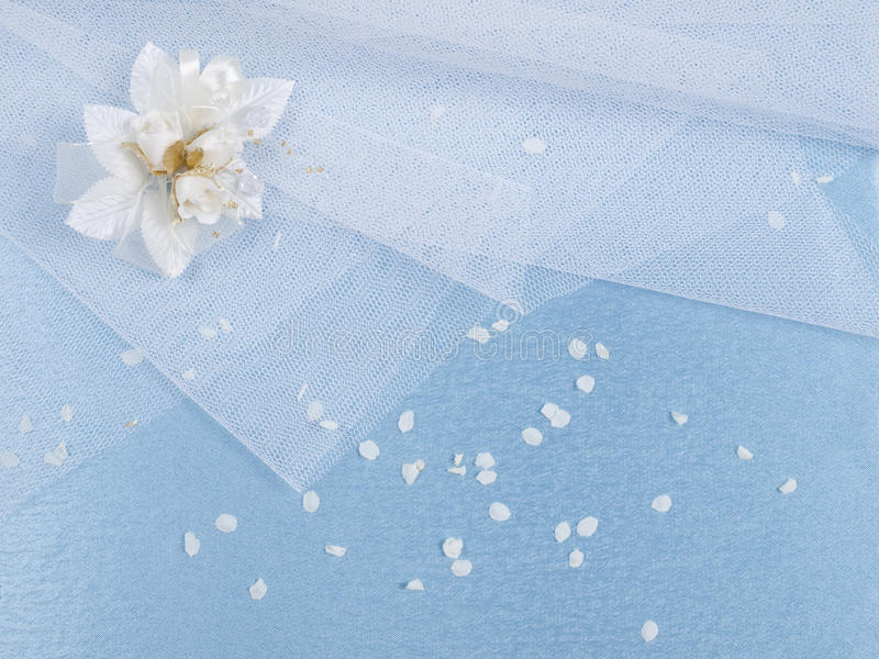 Weddings accessorie a buttonhole and petals royalty free stock photography