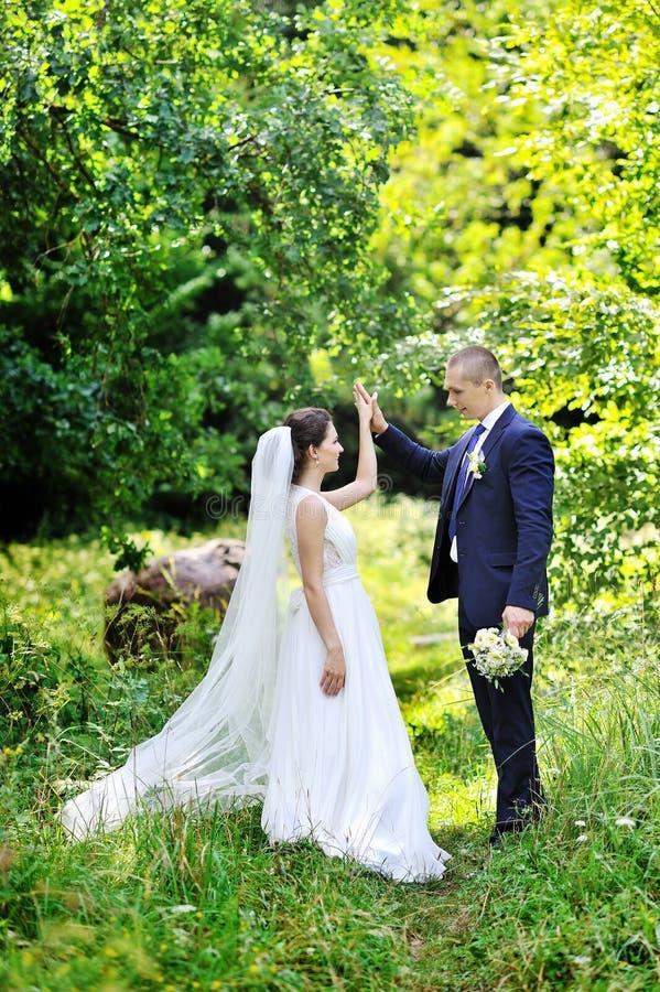 Weding夫妇在一个绿色公园 免版税库存照片
