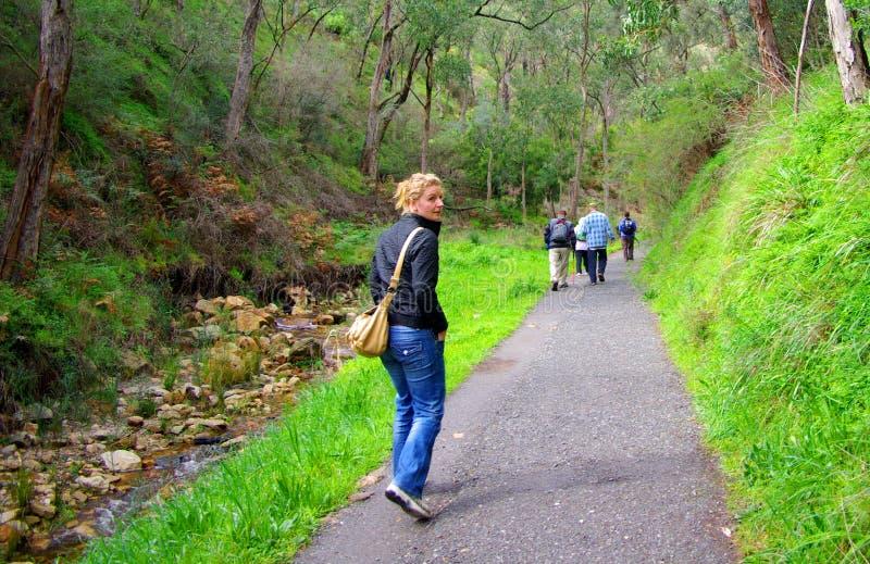 Download Weekend Walking stock image. Image of creek, flow, nature - 6263655