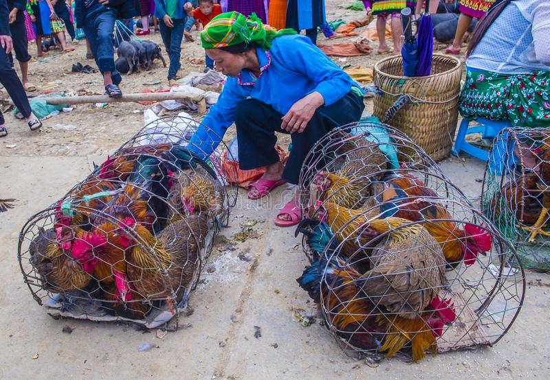 Weekendu rynek w Van Wietnam fotografia royalty free