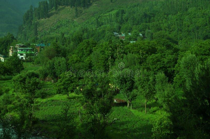Weelderig groen Kashmir dorp-Pahalgam stock afbeeldingen