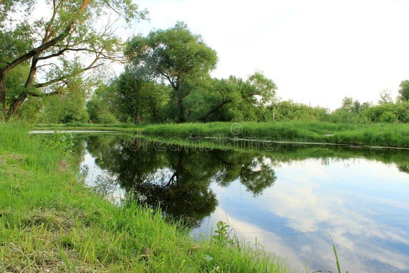 Weelderig landschap stock fotografie