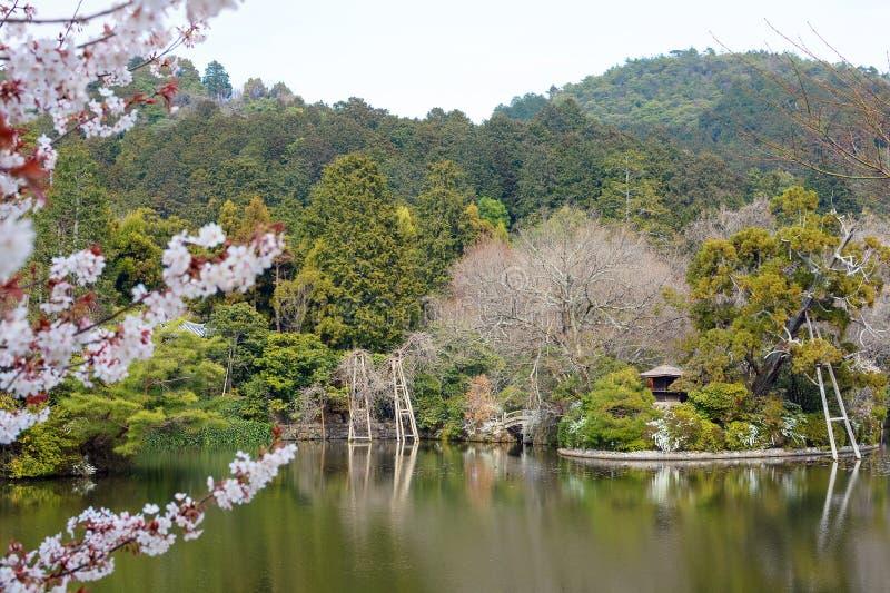 Weelderig vijver en Zen-tuinlandschap in Ryoan -ryoan-ji in Kyoto, Japan stock afbeeldingen