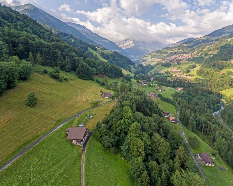 Weelderige alpiene van de riviervallei en berg pieken royalty-vrije stock foto