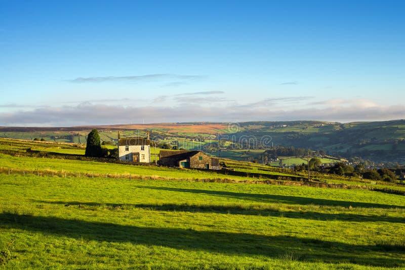 Weelderige gebieden met witte geschilderde boerderij stock foto's