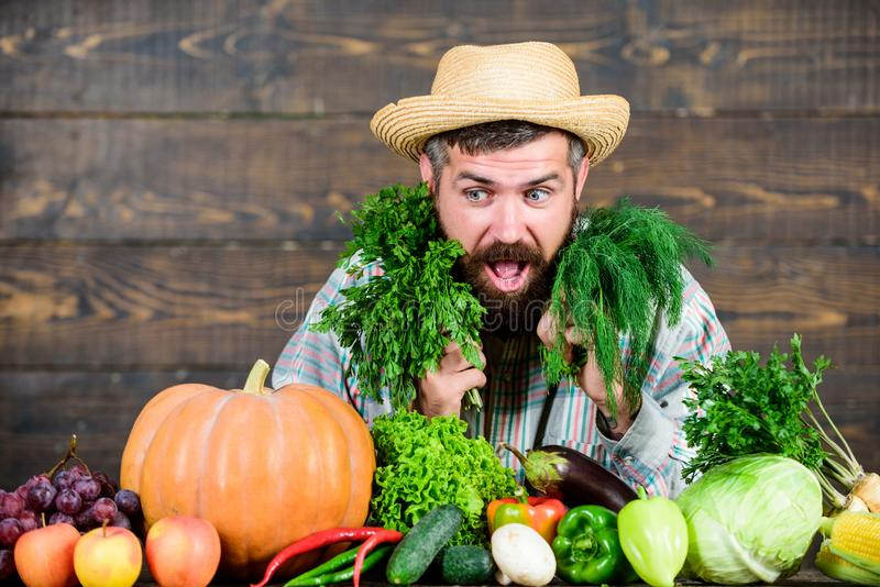 Weelderige gezonde baard gebaarde rijpe landbouwer Oogstfestival mensenchef-kok met rijk de herfstgewas Organisch en natuurvoedin stock afbeelding