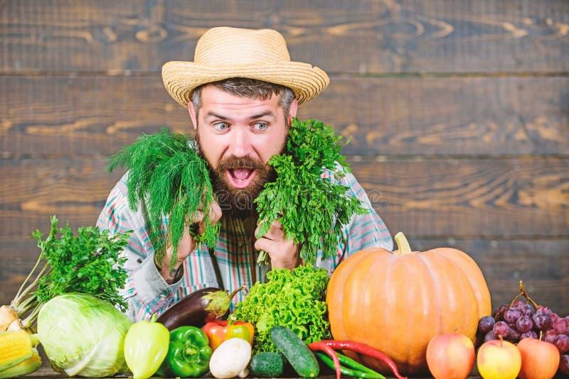 Weelderige gezonde baard gebaarde rijpe landbouwer Oogstfestival mensenchef-kok met rijk de herfstgewas Organisch en natuurvoedin stock foto's