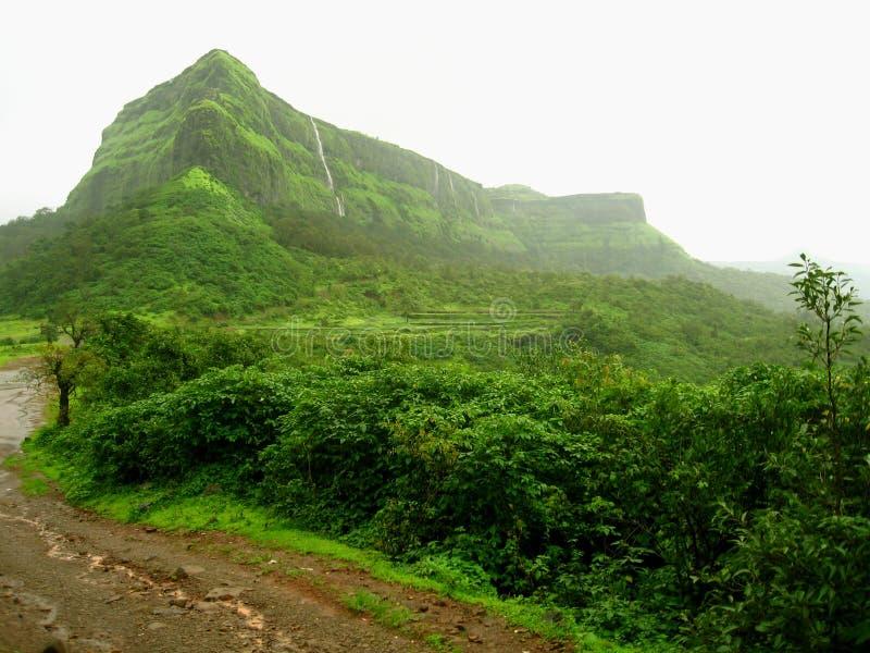 Weelderige groene berg en wildernis royalty-vrije stock afbeeldingen