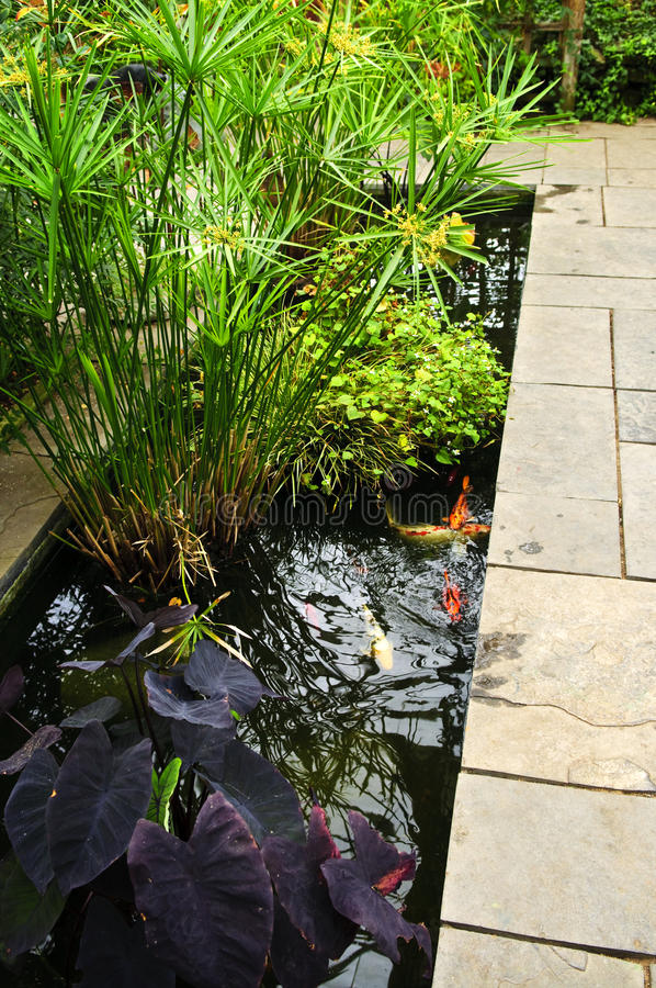 Weelderige groene tuin stock afbeelding