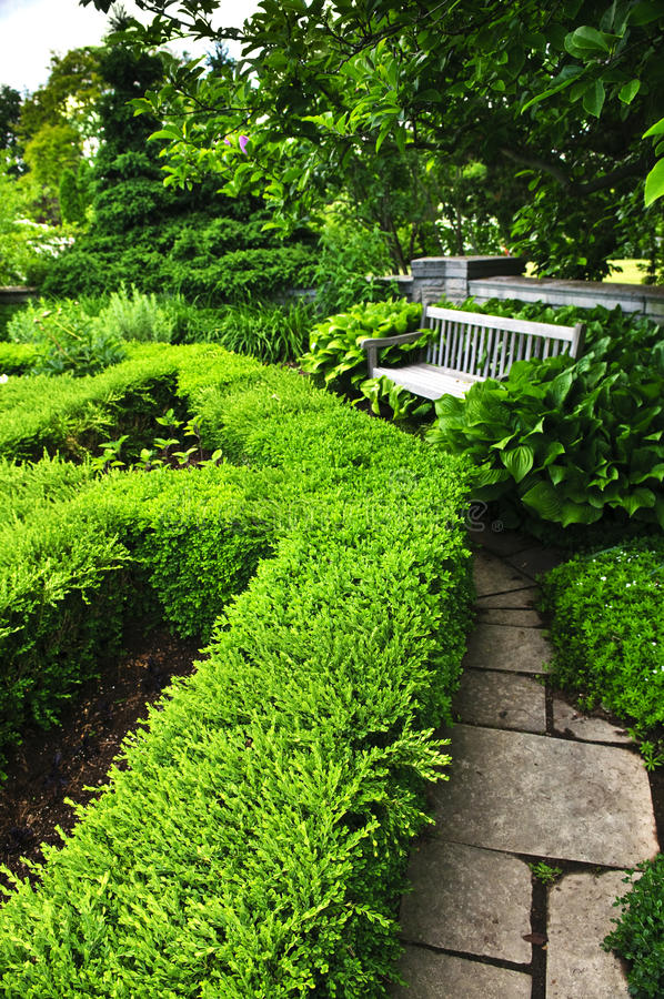 Weelderige groene tuin royalty-vrije stock fotografie