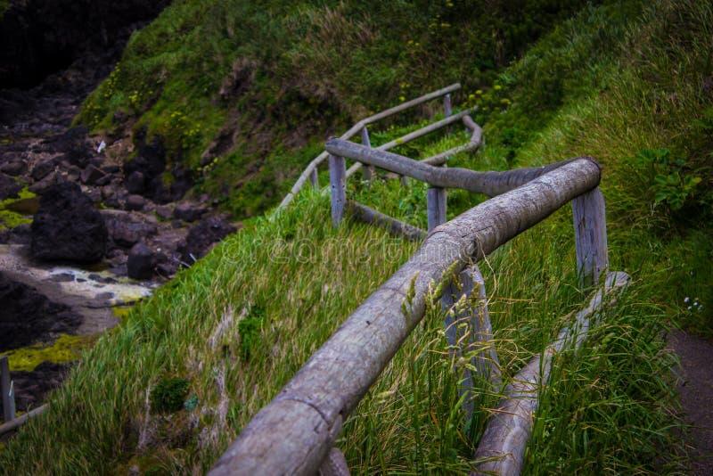 Weelderige hellingssleep aan de Karnton van de Duivel in Kaap Perpetua, Oregon stock afbeeldingen