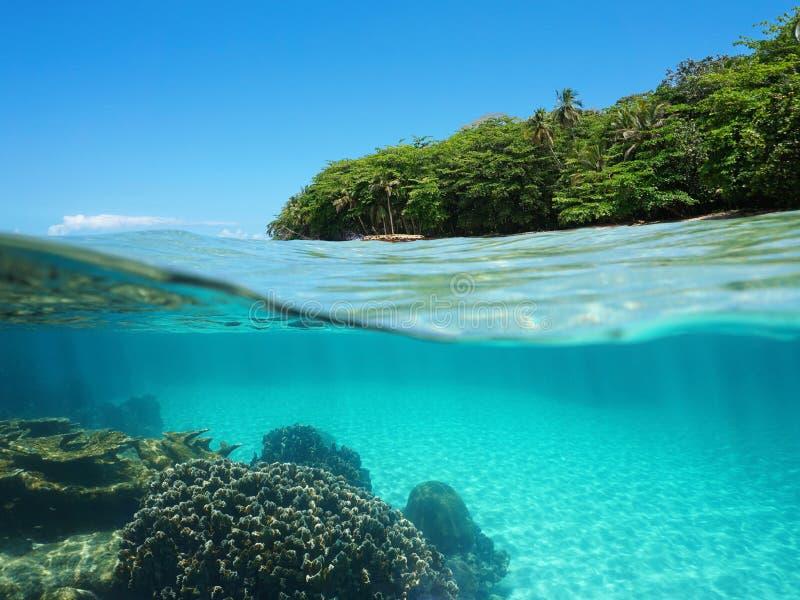 Weelderige tropische kust en koralen onderwater royalty-vrije stock afbeelding