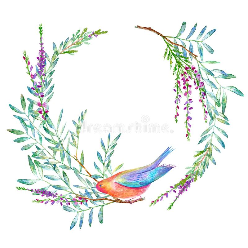 Weeping willow on the lake. Summer.Floral wreath and bird.Garland with pistachio branches and lavender flowers. Floral wreath and bird.Garland with pistachio royalty free illustration