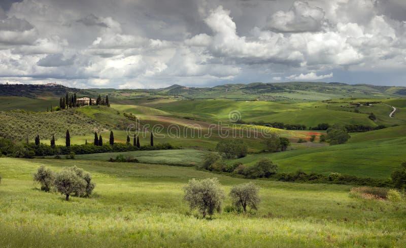 Weergave op velden, wijngaarden, olijfgaarden en boerderijen ten zuiden van Pienza in Val D'Orcia San Quirico Toscane, Italië royalty-vrije stock afbeeldingen