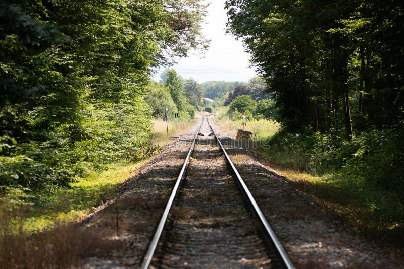 Weergeven langs een treinspoor die uit het bos komen en op de horizon beëindigen royalty-vrije stock fotografie