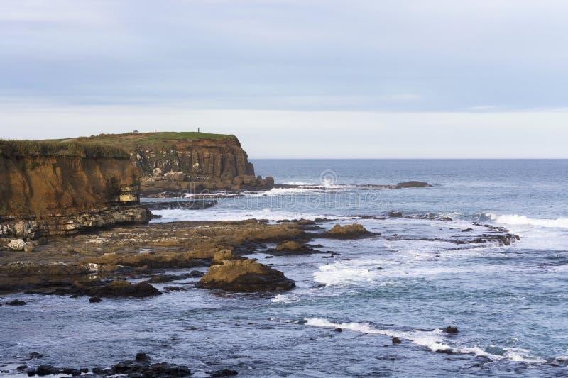 Weergeven op Curiosumbaai, het meest zuidelijke punt van Catlins, Nieuw Zeeland royalty-vrije stock fotografie