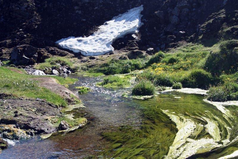 Weergeven op kleine witte gletsjertong en groene toneelkreek, IJsland royalty-vrije stock afbeeldingen
