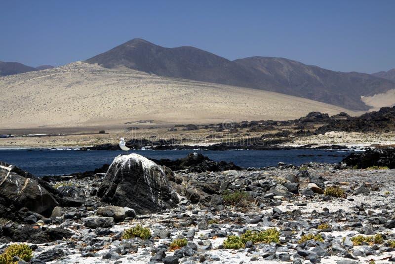 Weergeven over ruwe stenen en lagune op onvruchtbare droge bergen - Bahia Inglesa bij vreedzame kust van Atacama-woestijn, Playa- royalty-vrije stock foto