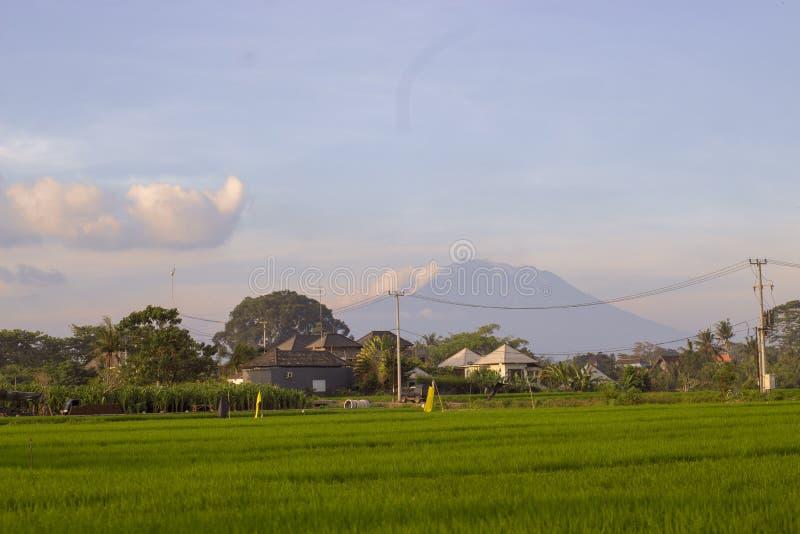 Weergeven van Agung-vulkaan van padievelden op zonsondergang royalty-vrije stock foto