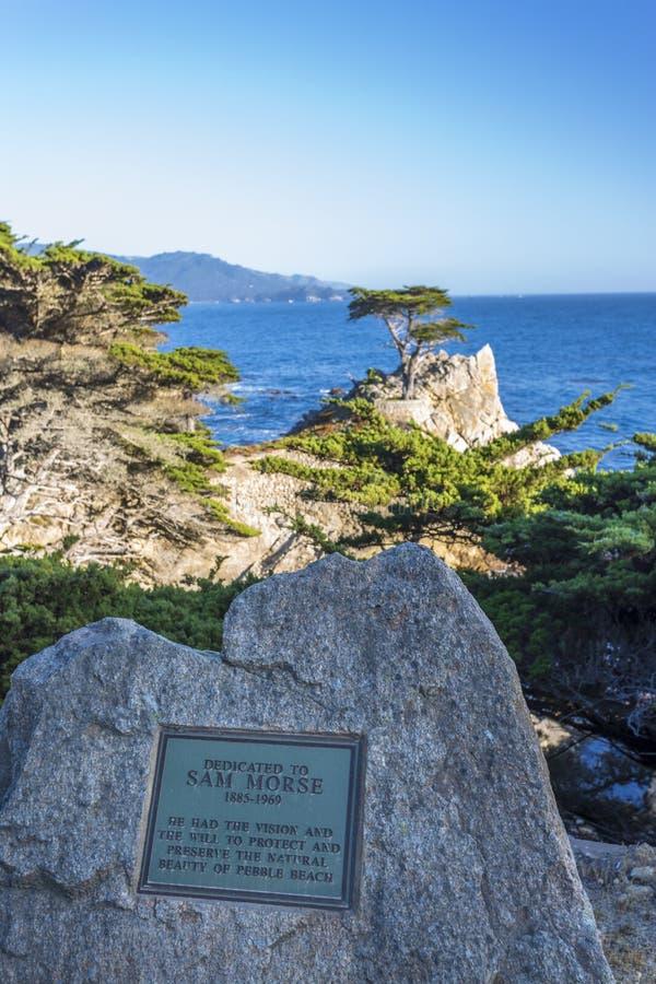 Weergeven van Carmel Bay en Eenzaam Cyprus bij Kiezelsteenstrand, 17 Mijlaandrijving, Schiereiland, Monterey, Californië, Verenig royalty-vrije stock afbeeldingen