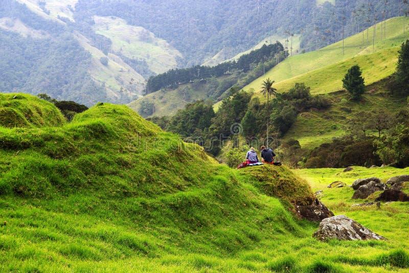 Weergeven van Cocora-Vallei in Salento, Colombia stock fotografie