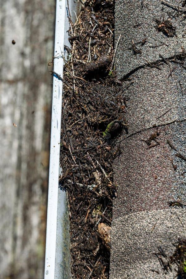 Weergeven van dak van de dakspanen en de goot van het asfaltdak die met boompuin worden gevuld, tijd voor goot het schoonmaken stock foto's