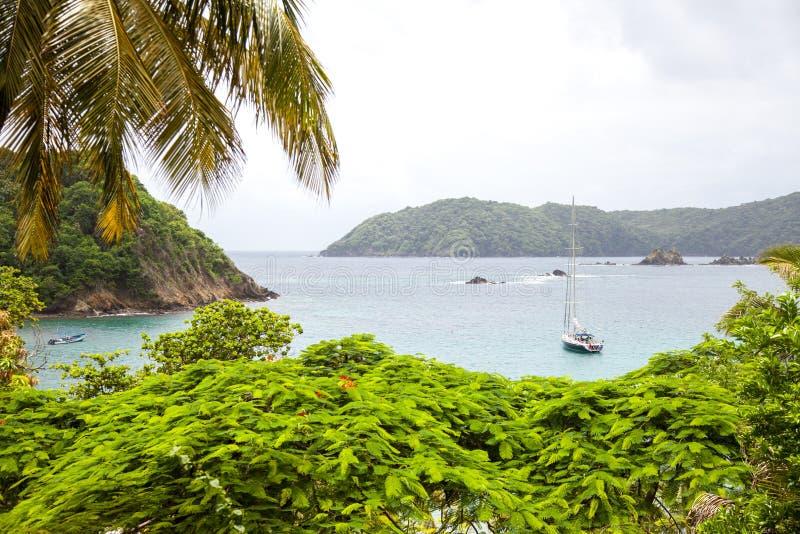 Weergeven van de Baai in het Caraïbische Eiland van de Subtropen van Tobago royalty-vrije stock afbeeldingen