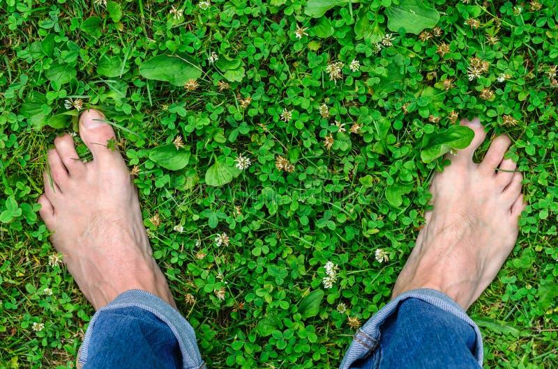 Weergeven van de benen van mensen gekleed die in jeans, blootvoets op het groene gras wordt gevestigd royalty-vrije stock fotografie