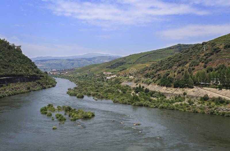 Weergeven van de Douro-Rivier stroomafwaarts van de Regua-Dam royalty-vrije stock fotografie
