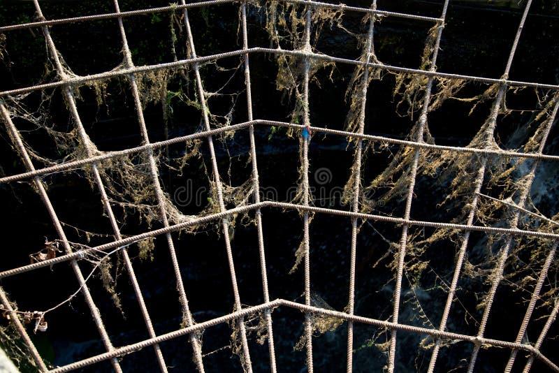 Weergeven van de metaalversterking in de vorm van een Web tegen het openen, de zon bij zonsondergang royalty-vrije stock afbeelding
