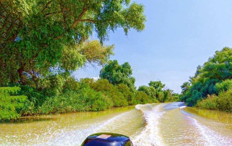 Weergeven van de motorboot aan de mooie aard en de rivier royalty-vrije stock foto