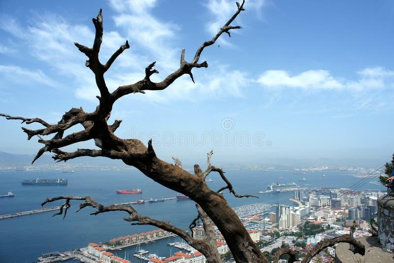 Weergeven van de rots op de haven van Gibraltar stock afbeeldingen