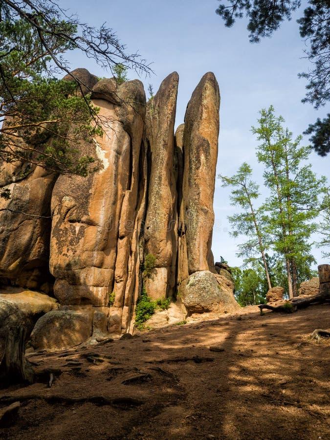 Weergeven van de rotsveren op een zonnige de zomerdag stock afbeelding
