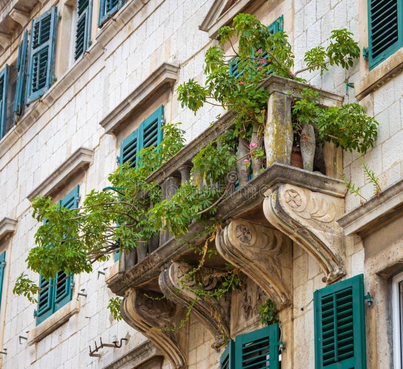 Weergeven van het balkon met groene installaties van een oud uitstekend gebouw in Kotor die, Montenegro wordt verfraaid royalty-vrije stock foto's