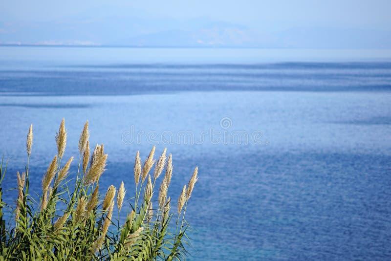 Weergeven van het binnenlandse overzees van †‹â€ ‹Korfu met de kusten van Albanië als achtergrond royalty-vrije stock foto