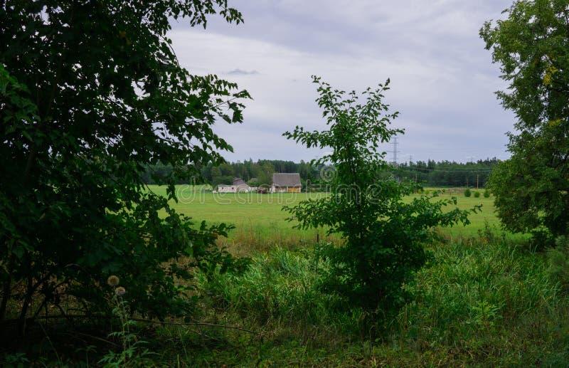 Weergeven van het landelijke landgoed op het gebied Landschap in Letland stock foto