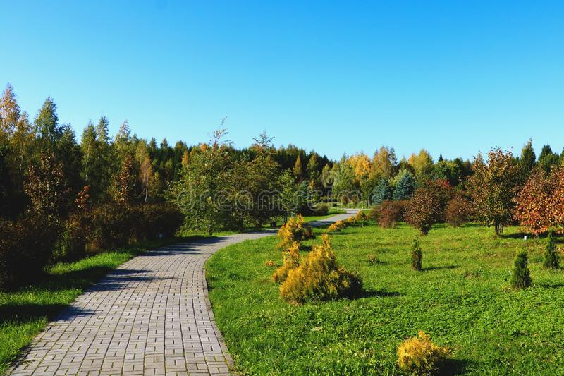 Weergeven van het park en de voetgang op een duidelijke dag royalty-vrije stock foto