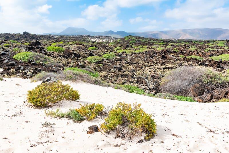 Weergeven van het witte zand dichtbij strand van Caleta DE Mojon Blanco, Lanzarote, Canarische Eilanden, Spanje stock fotografie
