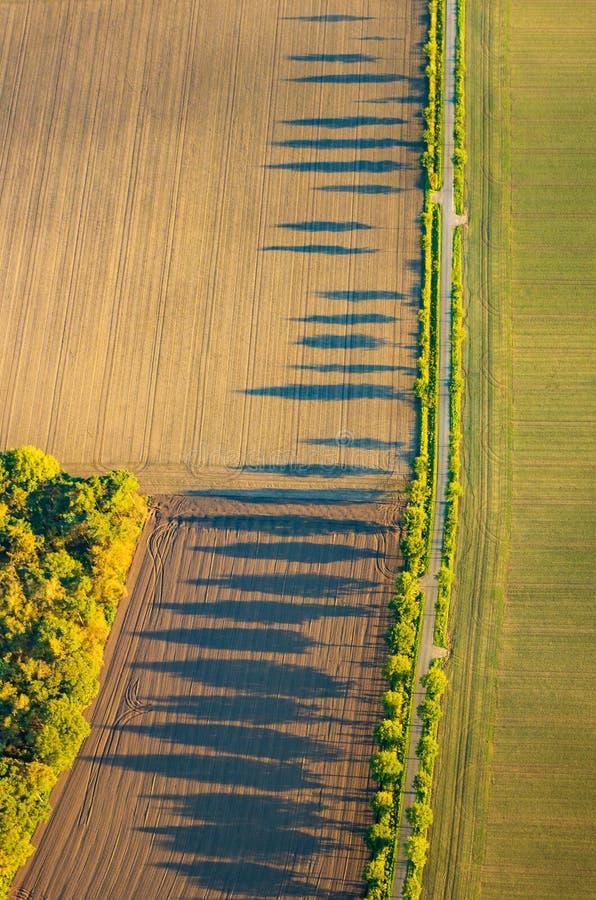 Weergeven van hierboven over gebieden en bomen met lange schaduwen in de avond zon stock afbeeldingen