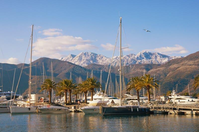 Weergeven van jachtjachthaven van Porto Montenegro op zonnige de winterdag Montenegro, Baai van Kotor, Tivat-stad stock fotografie